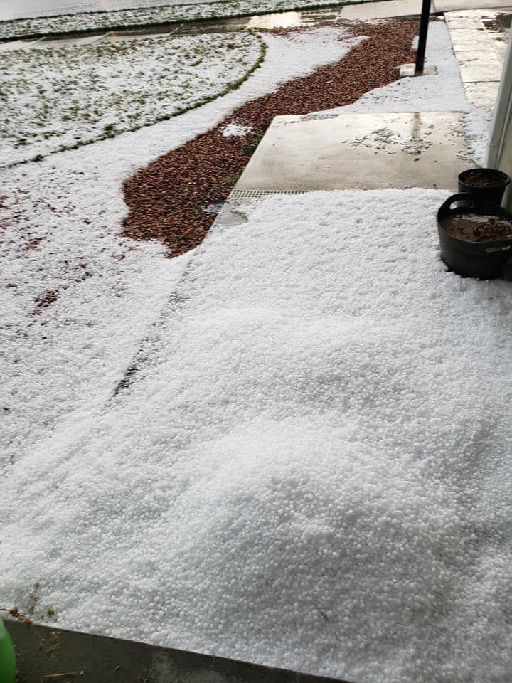 hail 1.jpg