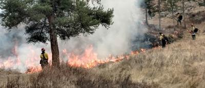 Bozeman to host virtual meeting on fire reduction project to keep city water safe