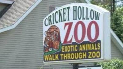 CRICKET HOLLOW ZOO WEB