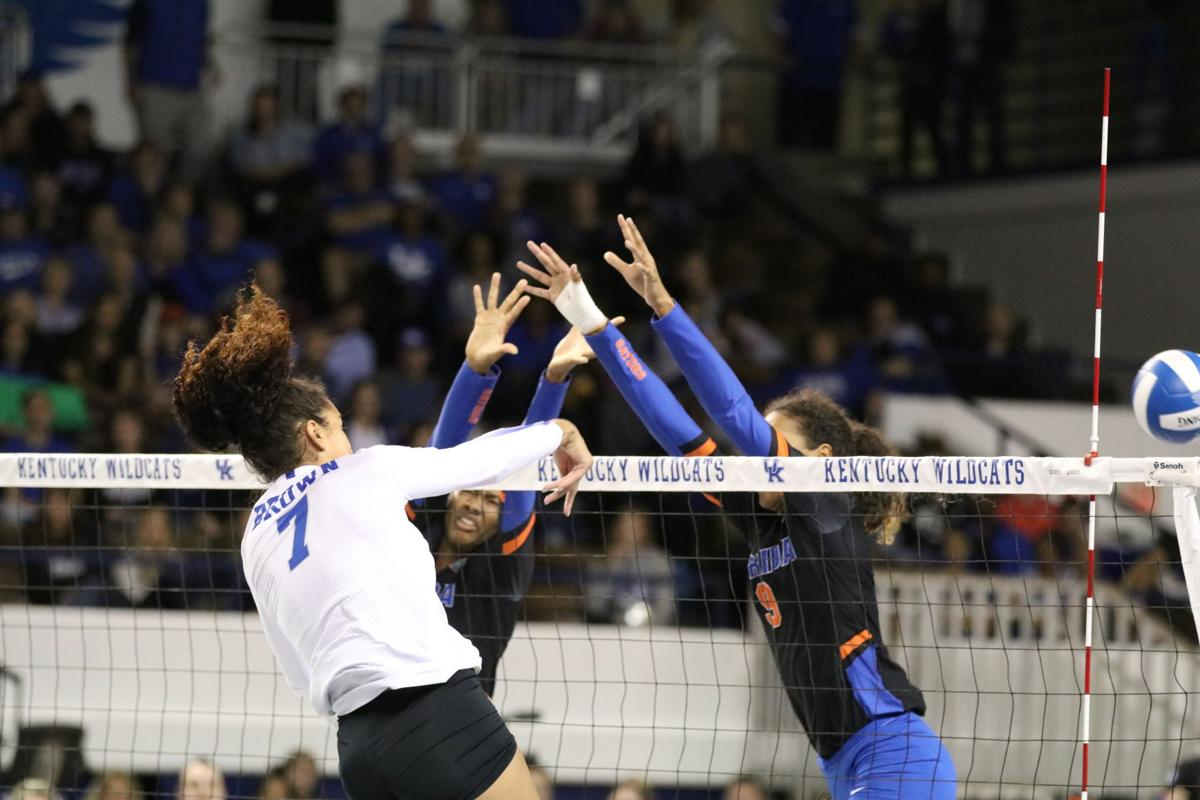 Kentucky Volleyball S Strong Lineup Sets The Team Up For A National Title Columnists Kykernel Com