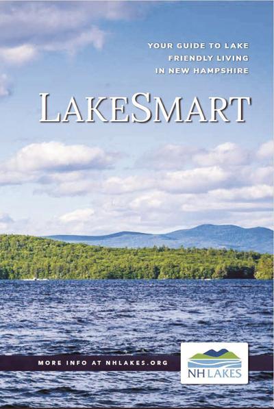 LakeSmart