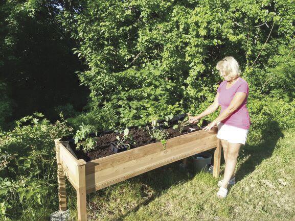 Orchard Hill gardener
