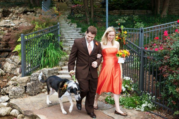 how much is a dog haircut incorporating pets into your wedding features 5138 | 51128c433f689.image