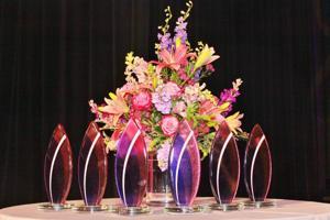 04.25.16-St.Louis-Visionary-Awards-22.JPG