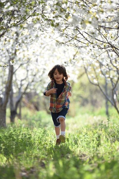 outside-summer-play-running-kids-boy-child-1416736.jpg
