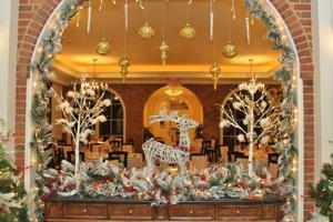 12.01.16-Opera-Holiday-21.JPG