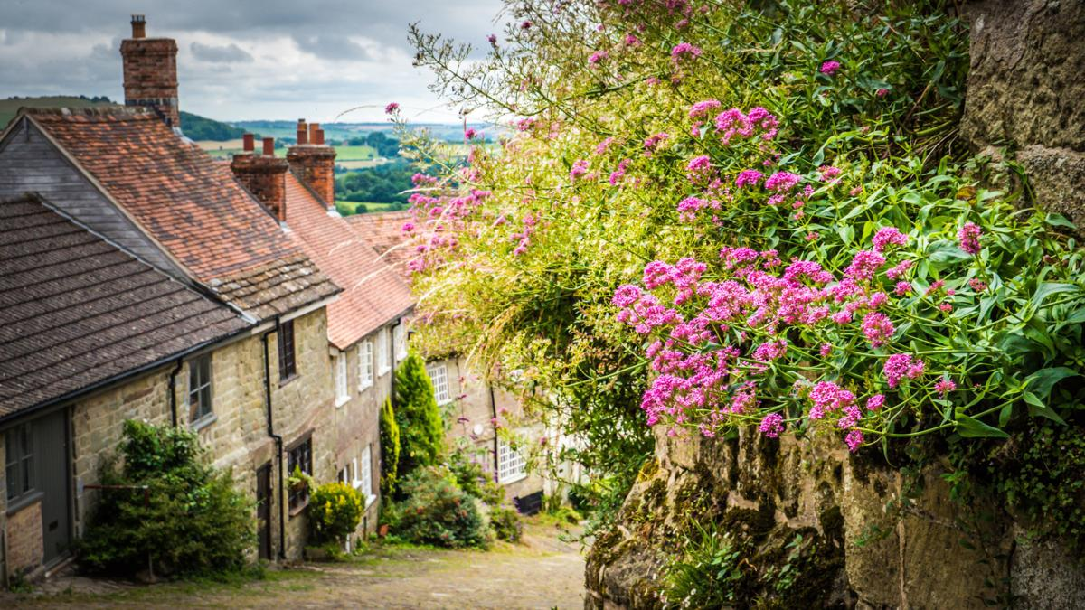 Old cobbled street in Shaftesbury, UK with flowers