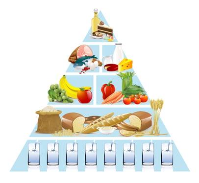 food pyramid adult Older