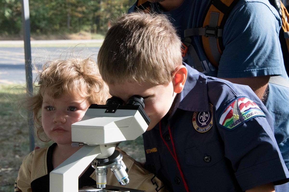 Cub Male Microscope.jpg