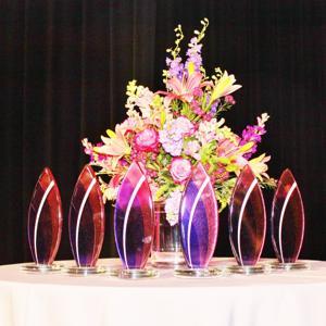 04.25.16-St.Louis-Visionary-Awards-23.JPG