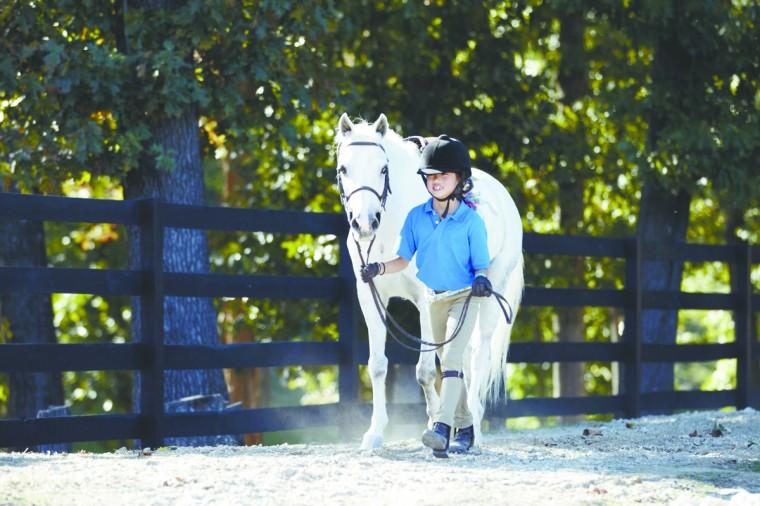 Equestrian Opportunities Man S Other Best Friend Kids