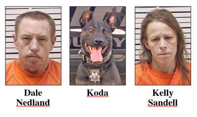K-9 Koda makes arrests