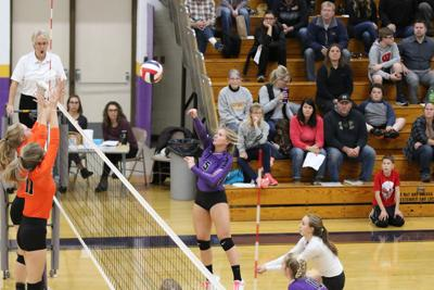 2019 Heart of the North All-Conference Volleyball