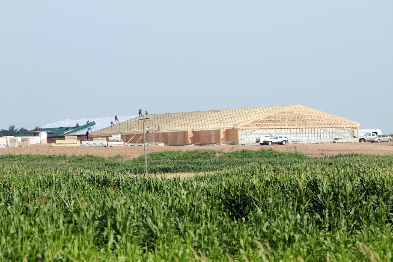 Glen Flora pig farm construction underway