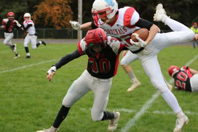 Raiders put up fight against top ranked Cardinals