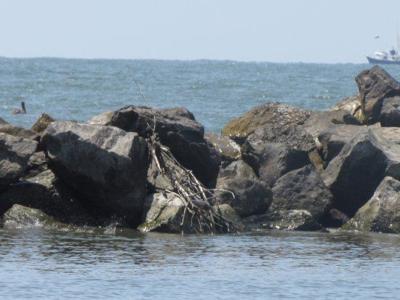 Grand Isle Rock Jetties