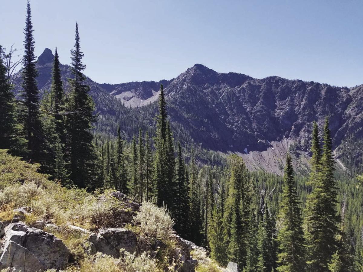 Rock Creek trail 1.jpg