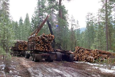 Thinning small logs