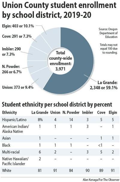 Student enrollment and diversity