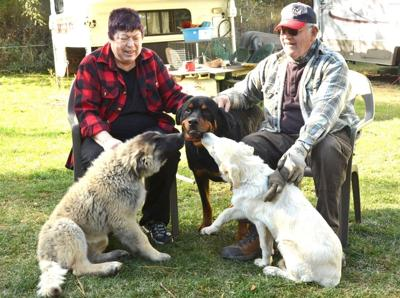 Hilermans with their Kangal dogs.jpg