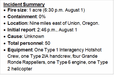 Incident summary.png