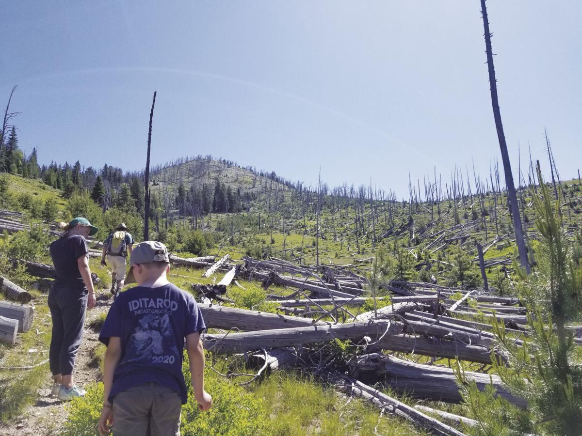 Peavy Trail 2.jpg