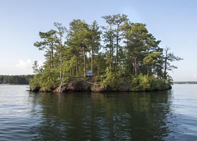 Tims Island