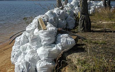 Lake Cleanup