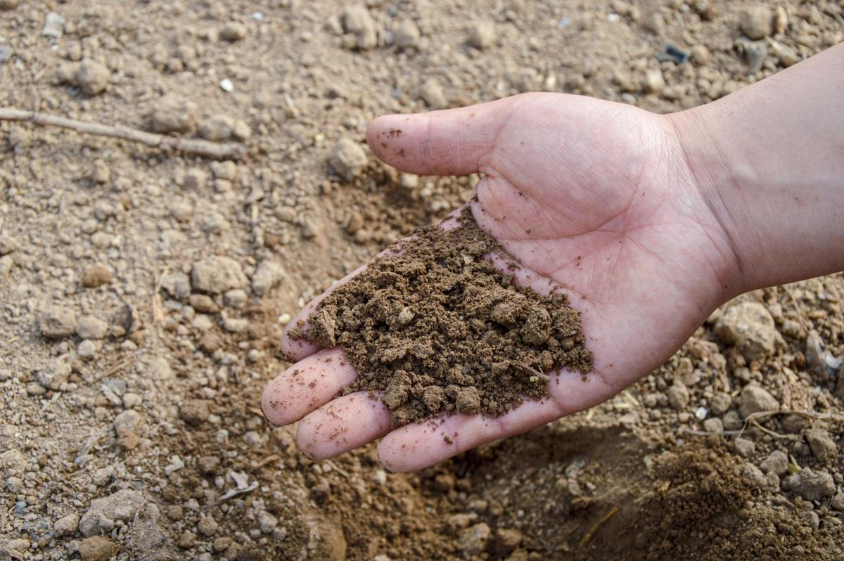 soil-766281.jpg