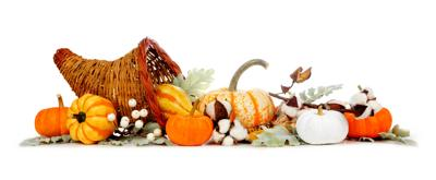 Thanksgiving cornucopia filled with autumn vegetables, pumpkins and fall decor isolated on a white background