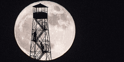 Nature of the Lake: The Lunatic's Guide to Moon Watching