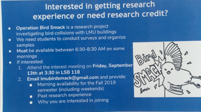 Strange research opportunities YOU can apply to