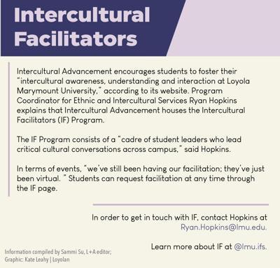 intercultural facilitators