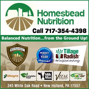 Homestead Nutrition Inc