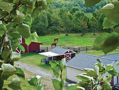 green-pasture-horse-barn.tif