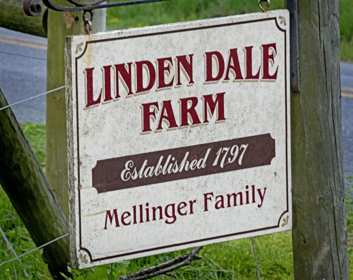 Linden Dale Farm
