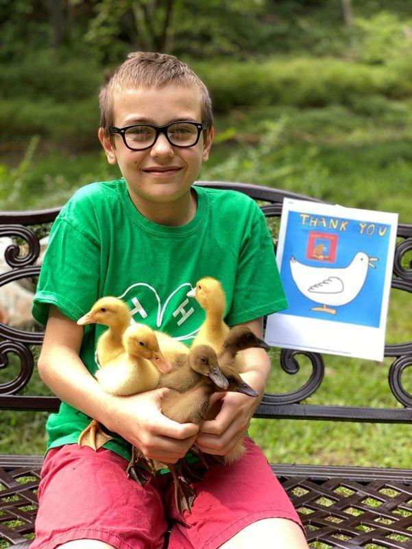 B-ducky-comics-3.jpg