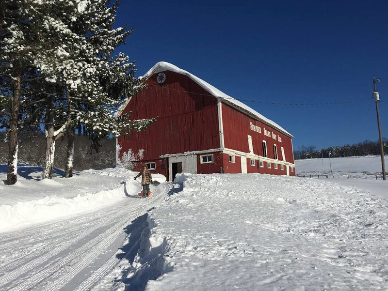 Farm Stays Offer Holiday Appeal