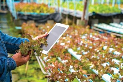 farmer-tablet-social-media.tif