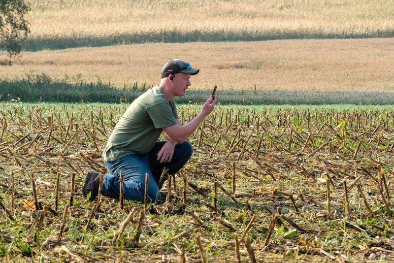 A1-Farmer-Friday-1.jpg
