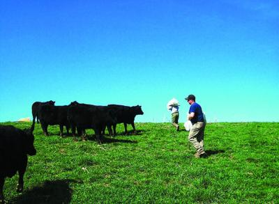 Lucas Farm Known for Its Quality Brood Stock | Southern Edition