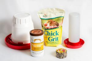 Chick and Poultry supplies