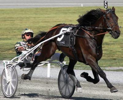 Harness racing: Father Patrick celebrates 4th year with big win at Chester