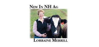 Lorraine Merrill