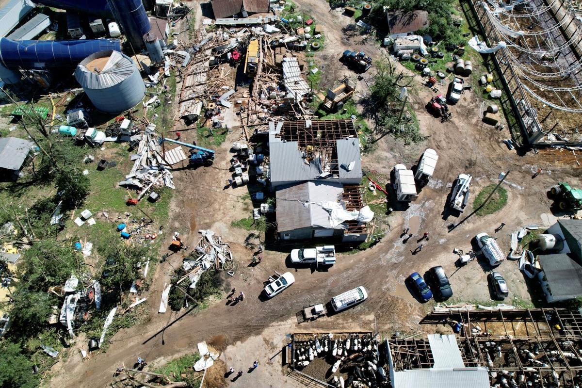 Ida and Wellacrest Farm 1