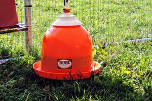 Bell Watering Kit