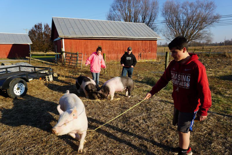 Tice Siblings Are First-Time Farm Show Exhibitors | Farm