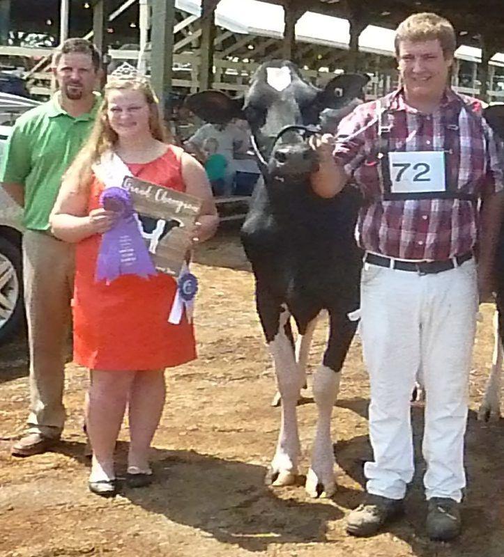 Southeast Holstein Champions Announced | Farm Shows & County