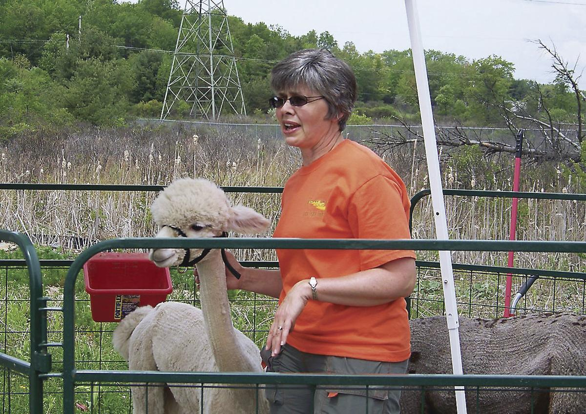 Alpacas Bring Small-Scale Production to Cameron County