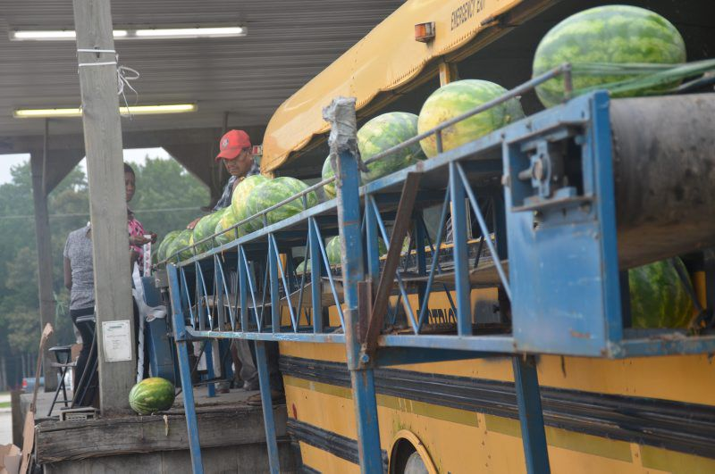 tyson-watermelons-03.jpg